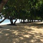 Lazy days on the beach