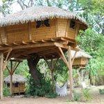 autre cabane