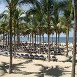 Beach area - plenty of loungers