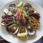 Mixed dozen oysters yummo