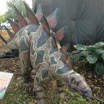 One of the Dinosaurs Come to Life exhibit members.