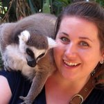 A very friendly lemur.