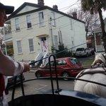 Palmetto Carriage Tour