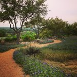 The bluebonnet strewn path to the overlook
