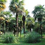 Lazarevsky Recreation Park