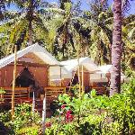 natural eco friendly resort