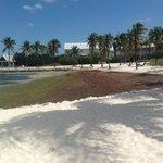 Gross beach