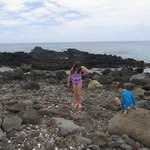 kids sea shell hunting