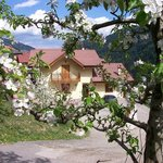 Photo of Agritur Sottoilmelo