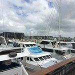 Auckland Harbour View