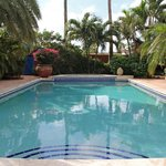 Pool and heated jacuzzi