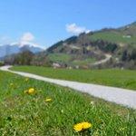 Uttendorf Spring