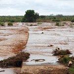 Unser abgebrochener Versuch, den Athi/Galana Fluß zu überqueren