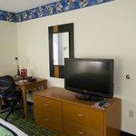 Themed Room TV + Desk