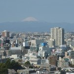 vew from room - like all of Tokyo before me, and most exciting of all, Mount Fuji!