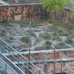 Photo of Angkor Sunny Villa