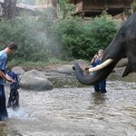 Splashing in the water with the elephants is awesome!