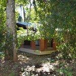 Habitaciones ubicadas en cabanas, al medio de la selva