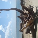 Shela Beach, opposite Manda island