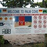 Palm Cove Beach6
