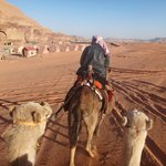 Camel Ride in the day