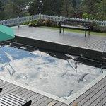 Broken pool