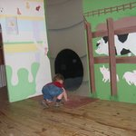 The kids love the many tunnels outside the baby animal area.
