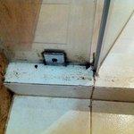 Moisissures à l'intérieur de la douche
