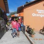 orange market shop here