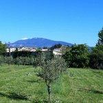 Blick vom Garten auf den Mont Ventoux
