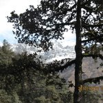 flora and fauna in the trekking way
