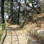 way to Yoamunotri