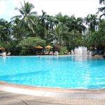 Pool!! Swim Swim