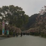 Way to the Kyushu National Museum