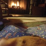 Our puppy resting by the fire!