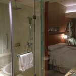 Shower unit and there is also a bathtub