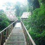 Walkway to birdwalk cabanas