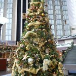 Christmas Tree with Inside Elevators as backdrop