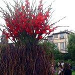 Fuori Fuori a Palazzo Pfanner la Rondine Lucca consiglia e promuove, design, floral design, foto