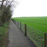 Path to Dolmen (in center of photo); 8-10 min walk