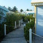 Cottage pathways