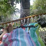 Chilling on the hammock by the beach.