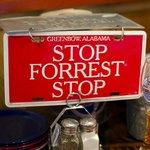 Stop forrest