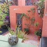La Rosa patio