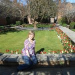 The gardens of Wilberforce House