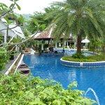 Pool & swim-up bar