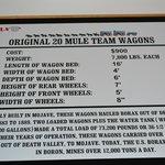 20 Mule Team data