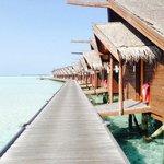 Walkway to the water villa