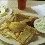 Regular catfish fillet dinner