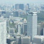 東京タワーの展望台から見えます。